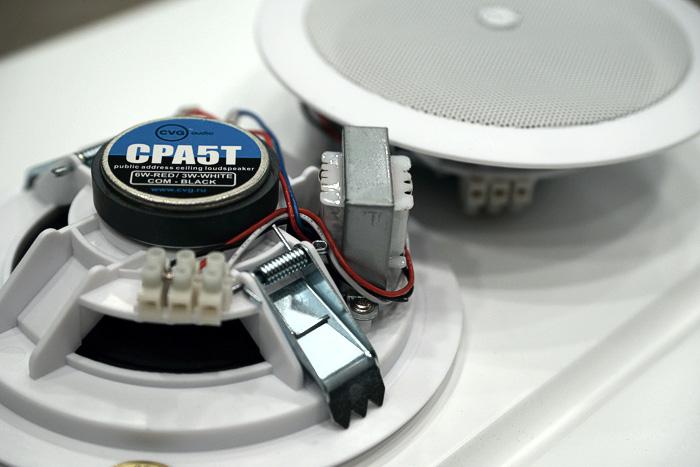 Широкополосные акустические системы CVGaudio CPA5T