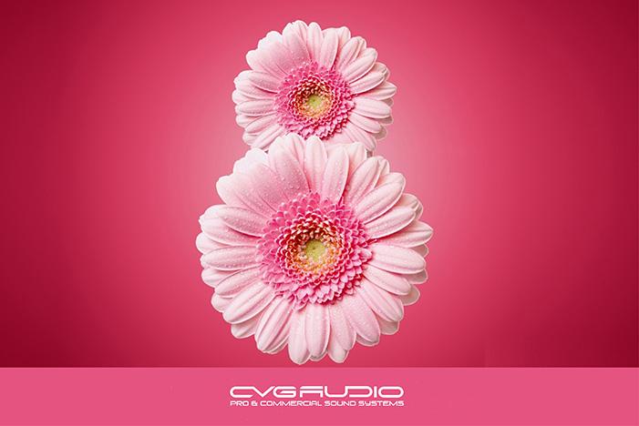Компания CVGAUDIO поздравляет девушек с 8-м марта